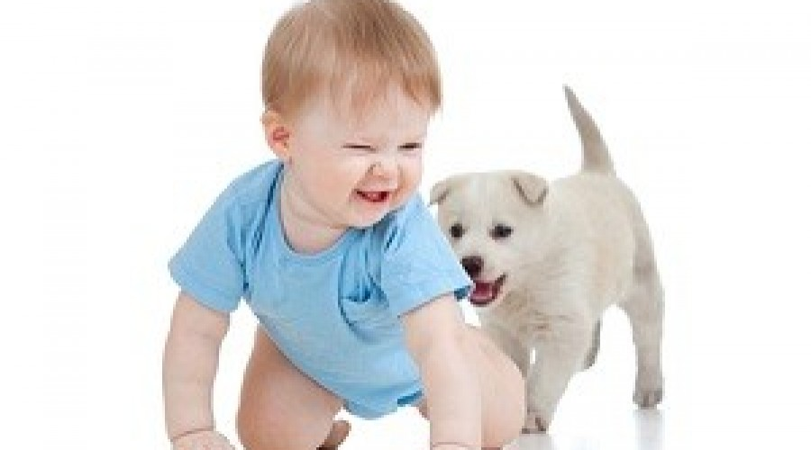 Kids Corner: To Crawl or Not to Crawl? That is the Question.